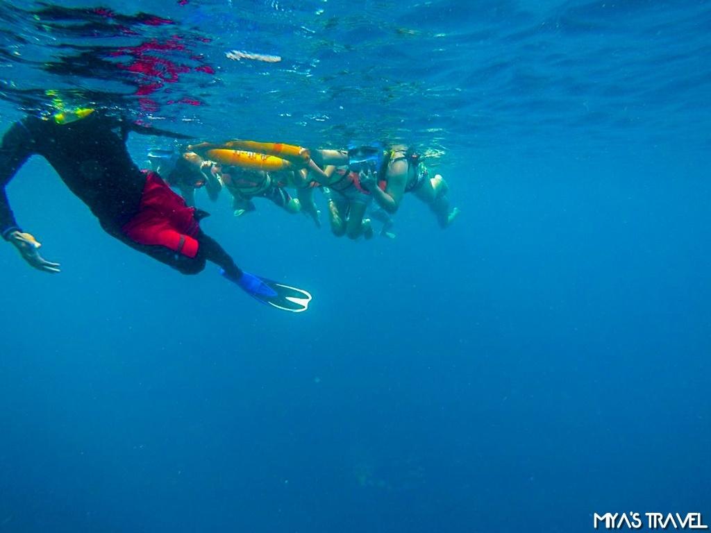 exploring the sea_171231_0057.jpg